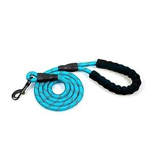 Mousse EVA réfléchissant Manche Nylon de Traction Corde Ronde Corde Durable Corde Dog Leash Twist Plomb Moyen et de Gros Chiens