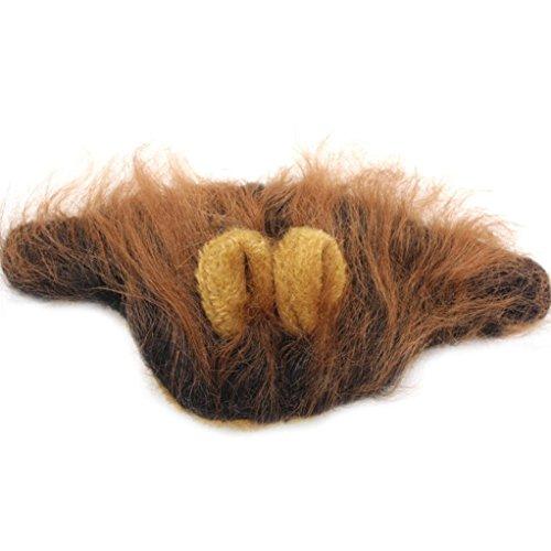 Yogogo Pelzigen Haustier Hut Kostüm Lion Mähne Perücke für Katze Halloween Dress Up mit Ohren Party (Kaffee)