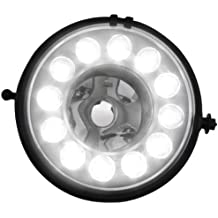 Dectane NLMI02LG - Luces antiniebla y diurnas para Mini Countryman, color negro