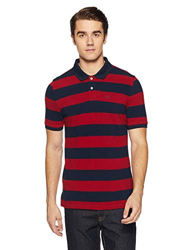 Arrow Sports Men's Striped Regular Fit T-Shirt