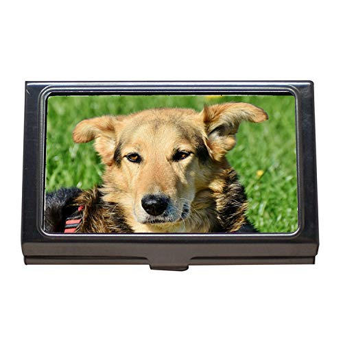 Visitenkartenhalter, Hund Mischling Hund Hybrid Schnauze Tier Haustier, Visitenkarten-Etui aus Edelstahl