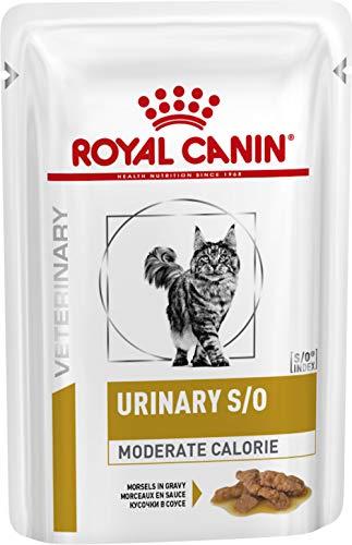 Royal Canin feline Diet Urinary S/o moderate calorie gatto cibo umido 48 x 100GR