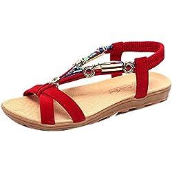 SKY Comfortable to wear it !!! Bohemia Sandalias de verano de las mujeres Zapatos Peep-dedo del pie zapatos bajos Sandalias romanas Señoras Flip Flops (41, rojo)