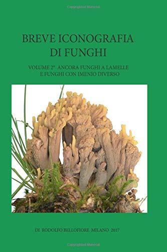 Lamelle Natur (Breve iconografia di funghi 2: Ancora funghi a lamelle e funghi con imenio diverso)