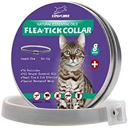 EXPAWLORER Collar de pulgas de Gato con aceites Esenciales Naturales para protección de 8 Meses, Tratamiento eficaz contra pulgas y garrapatas para Gatitos, 33 cm