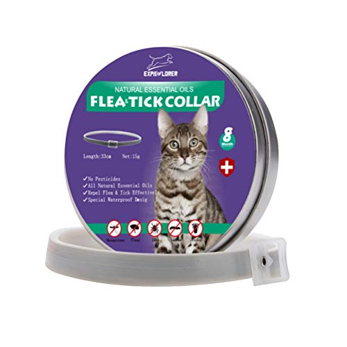 EXPAWLORER Flohhalsband für Katzen, mit natürlichen ätherischen Ölen für 8 Monate, schützt vor Flöhe und Zecken, effektiv gegen Kätzchen, 33 cm