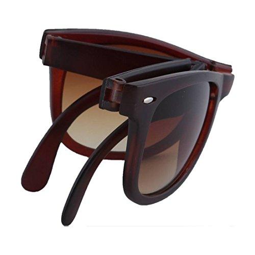 Elligator Brown Sunglass