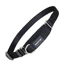 Red Dingo Plain Black Martingale Dog Collar (15mm x 25-39cm)