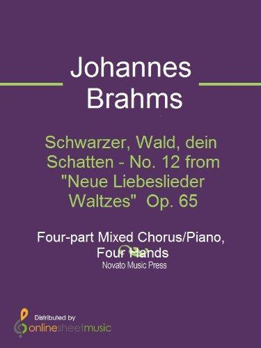 Neue Schatten (Schwarzer, Wald, dein Schatten - No. 12 from