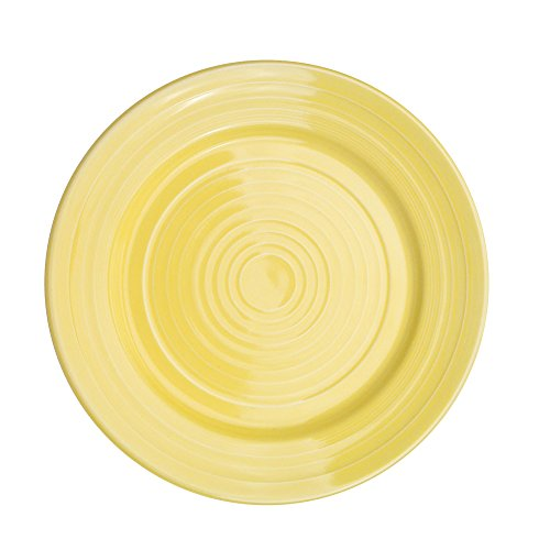 CAC China TG-9-SFL Tango Sunflower Porcelain Round Plate, 9-7/8 by 9-7/8 by 1-1/4-Inch, 24-Pack Porzellan Serveware