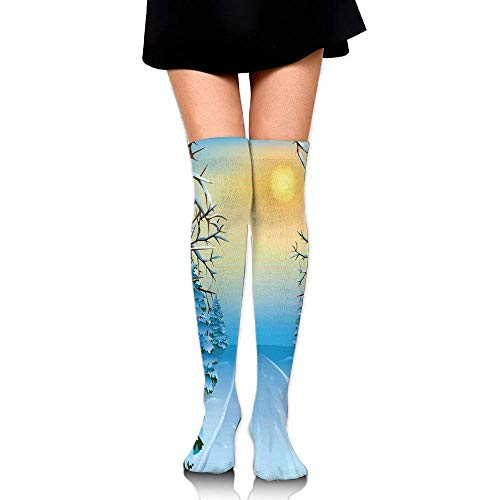 OQUYCZ Woman's Forest View Paint Print with Snowy Path Between Trees and Sun on Sky Breathable High Boot Socks