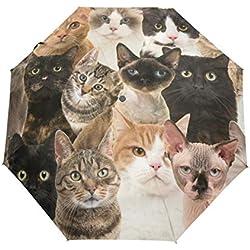 BIGJOKE - Paraguas Plegable de 3 Pliegues con Cierre automático, diseño de Gato de Dibujos Animados, Resistente al Viento, Ligero, Compacto, para niños y niñas