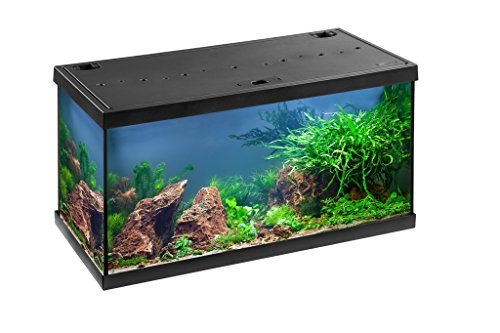 Eheim Aquarium komplett Set Aquastar 54 LED, Süßwasser Aquarien Set 60x30x30cm, 54 Liter (schwarz)