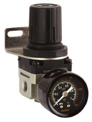 0.64 cm BSP Vergleichsnr FEM Durchflussmnge 2500 - Lieferung mit Befestigungsbügel und Stärke, 0-10 bar, BSPP (Professional Range)