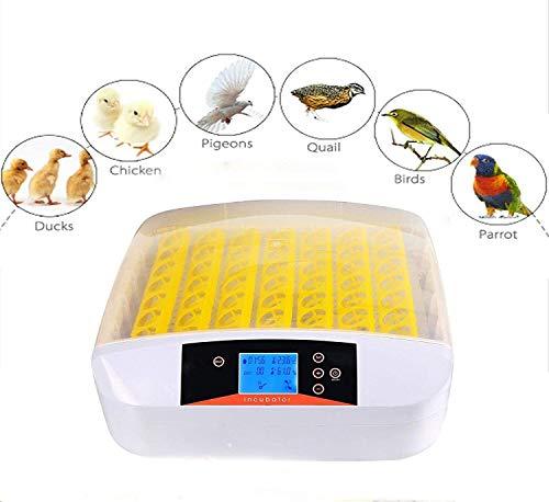 Kecoo incubatrice automatica di 56 uova di gallina, quaglie, rettili, uccelli, incubatore intelligente digitale con schermo a led di temperatura, spina europea,【eu stock】