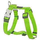 Red Dingo einfarbiges Hunde-Brustgeschirr (XL) (Limetten-Grün)