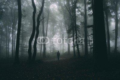 Alu-Dibond-Bild 120 x 80 cm: