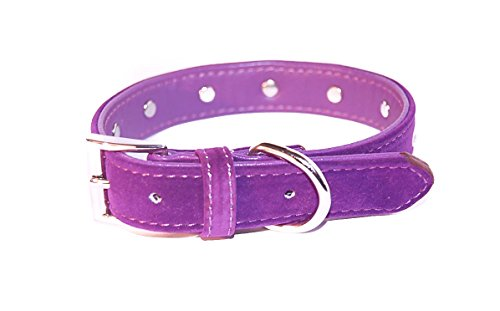 """Pet Palace® """"Plush Pup"""" Suede Luxury Dog Puppy Collar for Dogs of Distinction PLUS FREE LED FLASHING COLLAR TAG! (Purple, Extra Small) 5"""