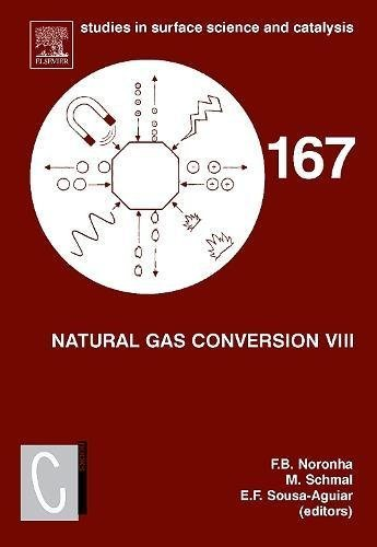 Natural Gas Conversion VIII: Proceedings of the 8th Natural Gas Conversion Symposium, May 27-31, 2007, Natal, Brazil (Studies in Surface Science and Catalysis Book 167) (English Edition) (Natural Gas Conversion)