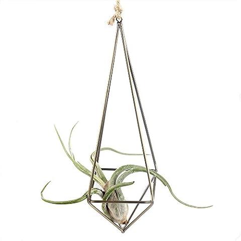 Rustic Style Freestanding Hanging Metal Tillandsia Air Plant Rack Bronze Color 26cm Height Quadrilateral Pyramid Shape Geometric - Hanging Flower Vase
