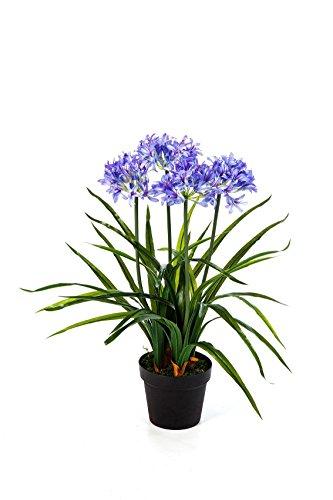 artplants Set 2 x Deko-Agapanthus SAKILE mit 4 blauvioletten Blüten, 65 cm – Dekoblume/Zimmerpflanze