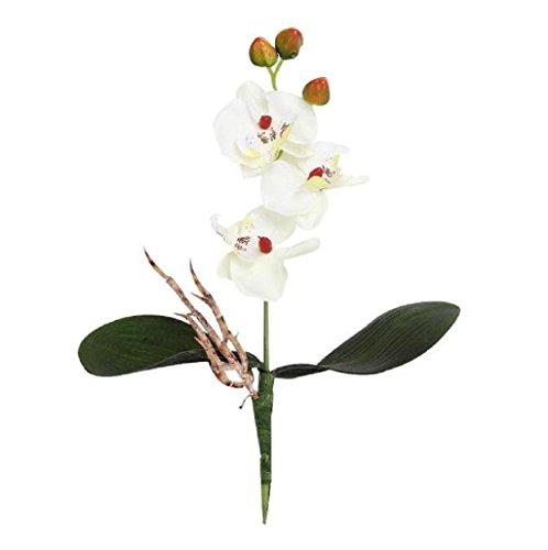 Sanysis - 3 Ramo Orquídea mariposa flores artificiales colgantes (Blanco)