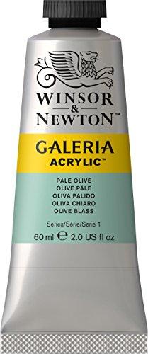 Winsor & Newton 2120435 Galeria Acrylfarbe, hohe Pigmentierung, lichtecht, buttrige Konsistenz, 60 ml Tube - Olivgrün Blass