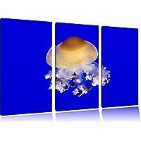 piccola medusain 3 pezzi immagine Foresta tela