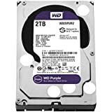 WD Purple 2TB SATA Internal Surveillance Hard Drive (WD20PURZ)