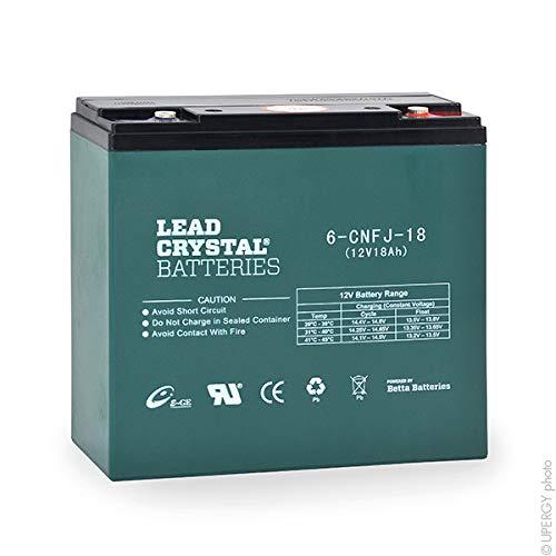 Lead Crystal - Akku Bleikristall 6-CNFJ-18 12V 18Ah M5 -