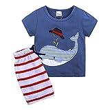 LEXUPE Kleinkind Jungen Kinder Baby Kleidung Cartoon Tops T-Shirt Shorts Hosen Trainingsanzug Set(Himmelblau,3T)