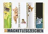 Magnetische Lesezeichen, 5er-Set, 2,5 x 10 cm mit Motiv Katzen