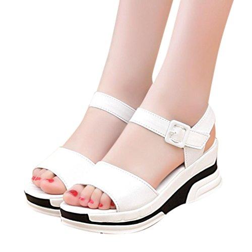 Sandalen Damen,Binggong Frauen Sommer Sandalen Schuhe Peep-Toe Low Schuhe Roman Sandalen Damen Flip-Flops Fischmund Sandalen Einfarbig Studenten Sandalette Bequeme Badeschuhe Reizvolle (Weiß, 38) (Sandalen Detail Schnalle)