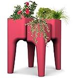 Hurbz KiGa M F macetas vegetales plástico 88x 64x 88cm), plástico, fresa, 88 x 64 x 88 cm