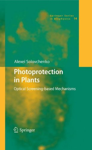 Photoprotection in Plants: Optical Screening-based Mechanisms (Springer Series in Biophysics, Band 14)