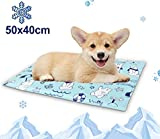 Dog Cooling Mat Pet Cooling Gel Mat Pad - Cooling Blanket for Dogs, Cool Dog Bed Small 50 x 40 cm