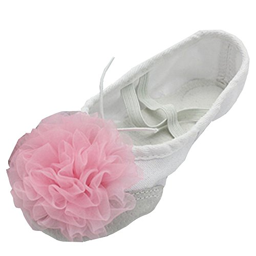 Lisianthus002 Pouco Schuhe Ballett Garoto Blume Dividir Único B