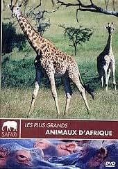Les Plus Grands animaux d'Afrique