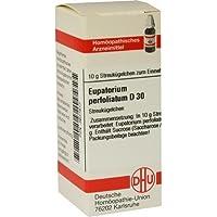 EUPATORIUM PERF D30 10g Globuli PZN:3631617 by DHU-Arzneimittel GmbH & Co. KG preisvergleich bei billige-tabletten.eu