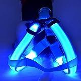 vcbbvghjghkhj-UK LED Hundegeschirr Haustier Weste für Hunde Perfekt für das tägliche Training Walking Running-Blue
