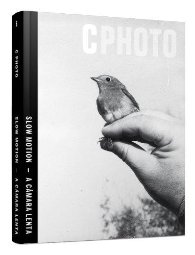 Descargar Libro C photo: slow motion = A cámara lenta: 5 (IVORY PRESS) de Alinka Echeverría