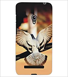 PrintDhaba Piegon D-5153 Back Case Cover for ASUS ZENFONE 5 A501CG (Multi-Coloured)
