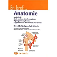 Anatomie. Angéiologie, nerfs câniens et nerfs rachidiens, organigrammes généraux, rappel osseux, articulaires et musculaires