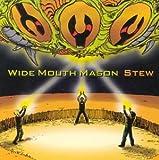Songtexte von Wide Mouth Mason - Stew