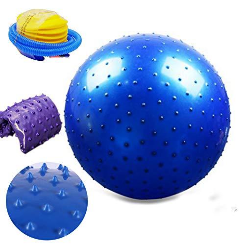 DCRYWRX Yoga Ball, Sport Fitness Ball Mit Gratis Fußpumpe (5 Farben,65CM) 400 Pfund Anti-Rutsch Yoga Balance Stabilität Swiss Ball Für Büro Und Heim Und Fitnessstudio,Blue