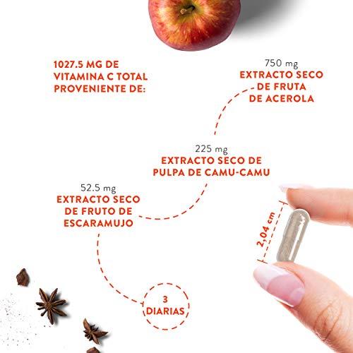 419ZsCbZfkL - Vitamina C Pura Altamente Concentrada - Más de 1000 mg por Dosis Diaria [1027 mg] - 180 Cápsulas - Con Flavonoides de Fruta Cítrica, Camu Camu y Acerola - Complemento Alimenticio 100% Vegano