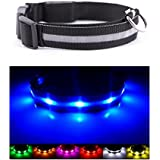 Neo+ Hundehalsband, Sichtbarkeit und Sicherheit–USB-aufladbares LED-Sicherheitshalsband–sehr helle LED–an Geräte anschließbar–ohne Batterien–toller Spaß–Ihr Hund wird sichtbarer und sicherer sein–blau, groß