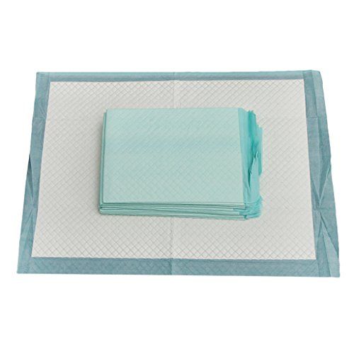 Sharplace Inkontinenzauflage Krankenunterlage (Größe 60 x 45cm) Einweg Inkontinenzunterlage (10 Stück Packung) Grün