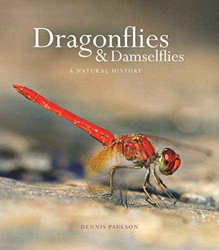 Dragonflies and Damselflies - A Natural History