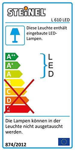 Steinel Außenleuchte L 610 LED, 180° Bewegungsmelder, 8 W, 160 lm, Edelstahl, Opalglas, für Hauseingang und Hausfront